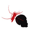 Red mosquito hold on human skull vector image vector image