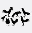 Rooster cock and hen silhouettes vector image