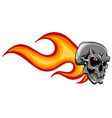skull on fire with flames in white vector image vector image