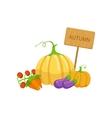 Vegetable Crops As Autumn Attribute vector image vector image