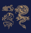 a set black and white asian dragons vector image vector image