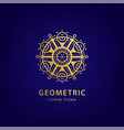 abstract geometric symbol linear alchemy vector image