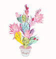 beautiful with pink cactus flower vector image vector image