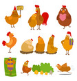 chicken cartoon chick character on happy vector image
