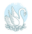 collection design element with swans vector image vector image