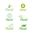 floral set of leaf green eco icons vector image vector image