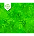 Green spring and summer background vector image vector image