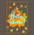 hello autumn poster with fallen leaves vector image