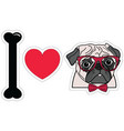 I love pugs witgh hipsters glasses and tie bow vector image