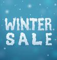 Ice Winter Sale vector image vector image