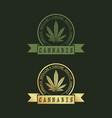 logo design for cannabis vector image