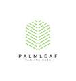 palm leaf logo design templateluxury elegant vector image vector image