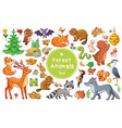 set with animals and birds in a children s vector image