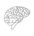 engraving brain hand drawn vector image vector image