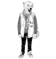 Fashion Hipster Animal bear portrait vector image