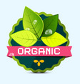 organic label - sticker with leaves vector image