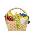 picnic basket with lemon grapes a branch of vector image