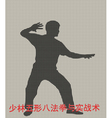 Silhouette of the man of engaged Kung fu on a gray vector image