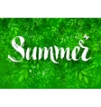 Summer word brush lettering vector image vector image