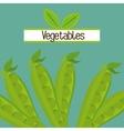 vegetables nutrition food fresh vector image
