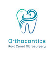 dental clinic logo template with tooth outline vector image