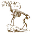 engraving of megaloceros deer skeleton vector image vector image
