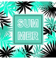 Summer hawaiian typographic flyer design vector image