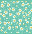 vintage daisies ditsy seamless pattern vector image vector image