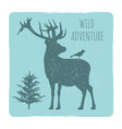 wild forest adventures emblem with deer and bird vector image