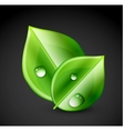 Green leaf ecology concept vector image