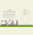 baseball banner template game ball with shadow vector image