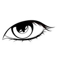 human eye in black and white vector image vector image