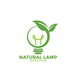 natural lamp graphic design template vector image vector image