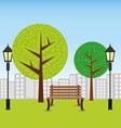 Park design vector image