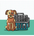 pets dog and cat vector image vector image