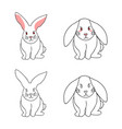 cute white rabbit isolated on white background vector image