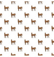 brown horse pattern seamless vector image