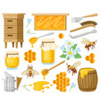 cartoon honey beekeeping elements honeycombs vector image
