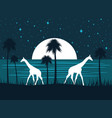 giraffe on the shore at night with a full moon vector image vector image