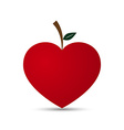 Love Heart Fruit Design vector image