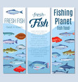 set banners fish vector image