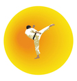 The the man shows karate on a bright background vector image