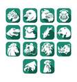 Animal Head Flat Icon Button vector image