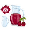 glass jug with natural juice ripe cherry juice vector image vector image