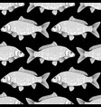 graphic carp pattern vector image