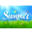 Summer word lettering vector image