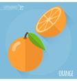 Orange icon vector image