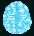 blue brain with nerve and isolated background vector image