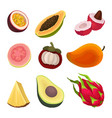 colorful flat set of exotic fruits natural vector image vector image