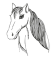Hand drawn horse with long mane and bang vector image